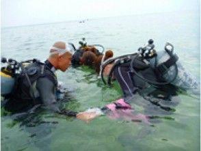 水面練習しながら美ら海を満喫!