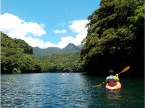 Surrounded by deep green forest and pure water, you can relax and refresh your mind and body ♪