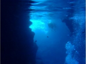 いよいよ青の洞窟へ