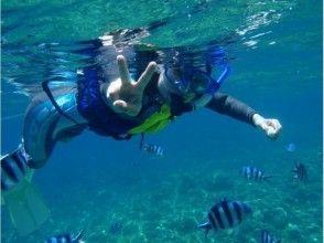 浅瀬でプカプカ美ら海体験!