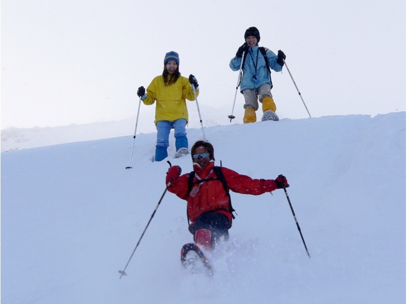 自然の地形を利用した滑り台などのアトラクションで遊ぼう!