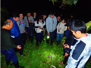夜のジャングルを散策!