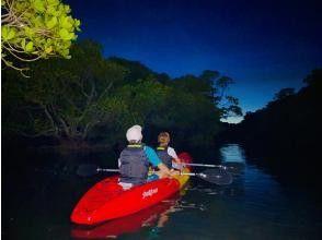夕日が沈み終わったら早速マングローブ林の中へ!!