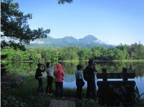 Shiretoko Five Lakes Walk