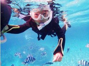 熱帯魚の海でシュノーケリング