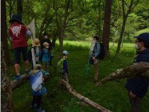 森の中での活動