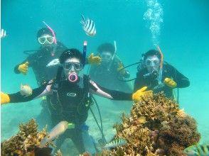 美しい水中世界へ