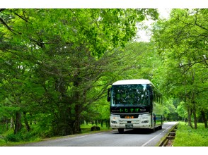 奥日光低公害バス乗車