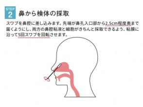 ステップ2)鼻から検体の採取