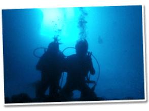 Diving start