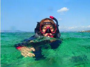 熱帶魚和珊瑚礁海,浮潛