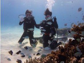 水中の世界を楽しむ