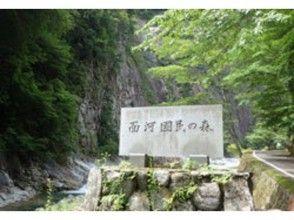 面河渓入口
