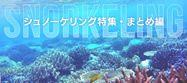 20141002_snorkeling