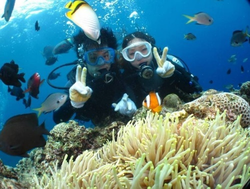 "If you anticipate walking underwater! Introduction of ""experiential diving"" which can be enjoyed with ease, without having to worry, even for those who are new for the first time or for the first time in a long time"