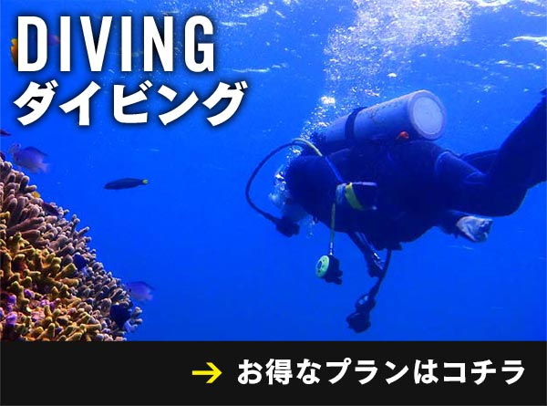 ダイビングのプランを検索!
