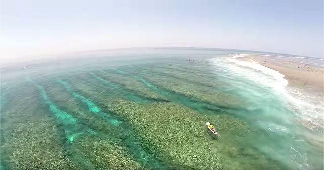 サンゴ透け透けの海!!モルディブでのサーフ映像が美しい!!