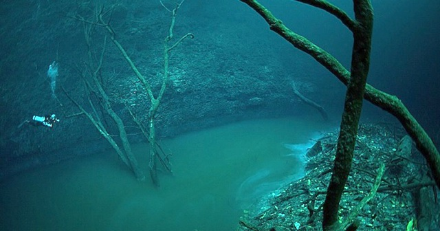 メキシコのセノーテ。水底に「川」が流れてる!?