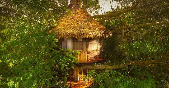 進化を遂げ続ける『GLAMPING(グランピング)』!ペルーのツリーハウス!!