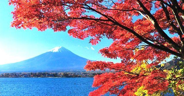 紅葉のみごろを迎えた山梨・箱根・伊豆の体験できるアクティビティ情報