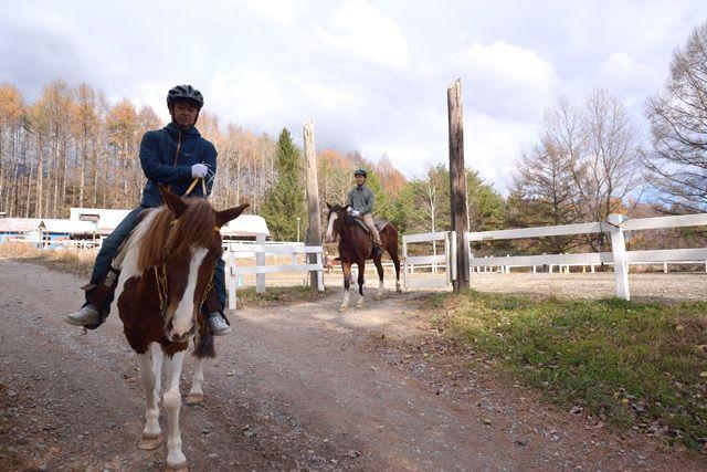 """""""ม้าเดินป่า"""" รายงานประสบการณ์ในการ Yatsugatake"""