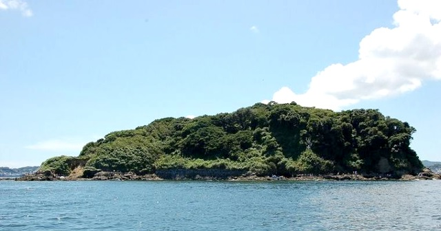 冬季平日限定!東京湾に浮かぶ無人島『猿島(さるしま)』を貸切にできる!!