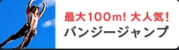 最大100M大人気バンジージャンプ