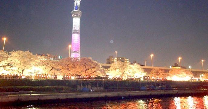 【期間限定】隅田川でお花見CHANDONクルーズ!!お得なフリードリンク付き!!