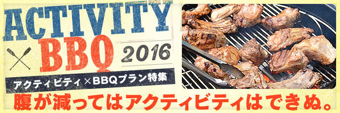 Activity × BBQ Feature 2016