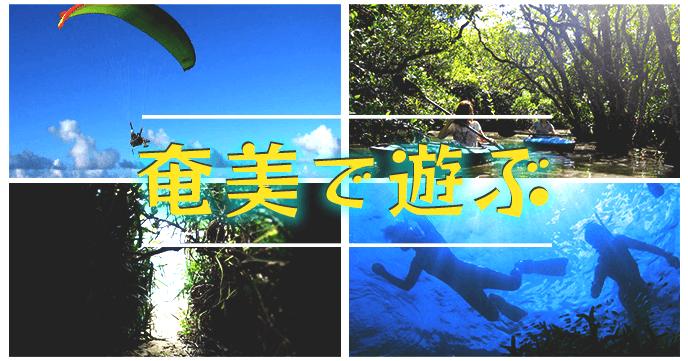奄美大島 おすすめ