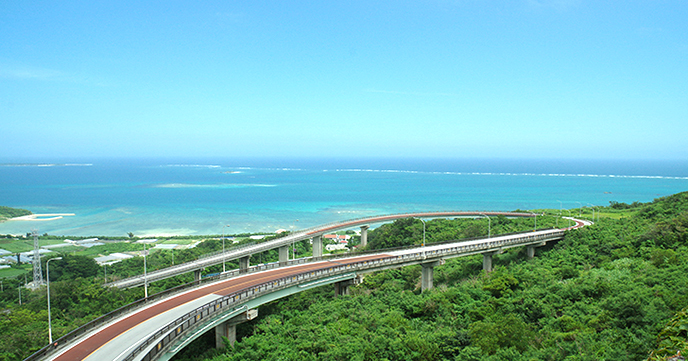 Winter Okinawadai enjoy in whale watching and scenic drive! Southern tourism model course