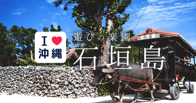 2017年石垣島人気アクティビティプランランキングのバナー