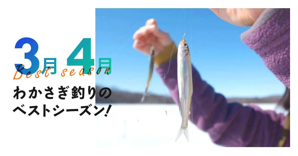 ワカサギ釣りは3〜4月がベストシーズン!全国ワカサギ釣りプラン特集のバナー