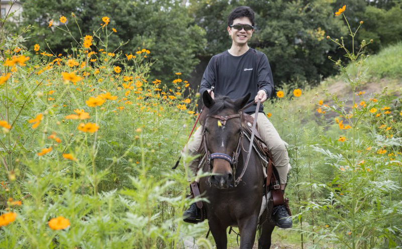 "【Horse trekking experience in Tokyo】 Hino Town Takahata Fudosan recommended Horseback riding experience ""Mary's Wind"" close up!"