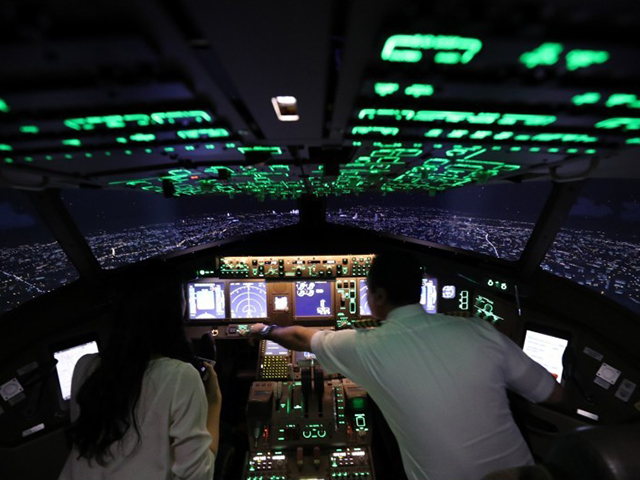 Flight simulator Sky Art Japan