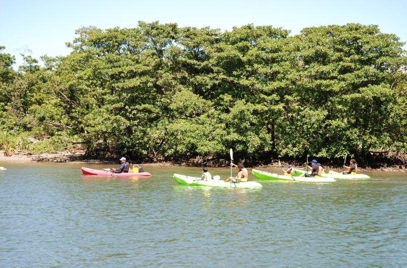 Iriomote Island Urayukawa sightseeing canoe