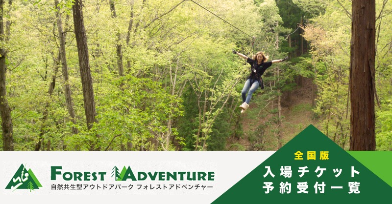 2017_forest_adventure