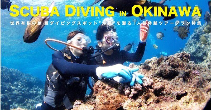 2017_okinawa_diving