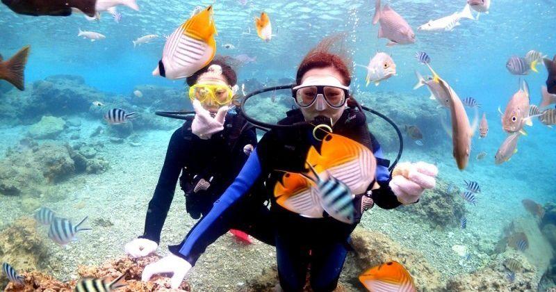 【沖縄青の洞窟おすすめショップ】体験ダイビング&パラセーリングツアーが人気「マリンレジャー ハイサイド」
