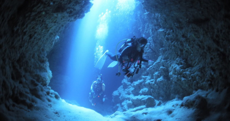 "【 Miyakojima recommended】 Beginner OK! Big boat diving plan is popular "" Miyakojima diving Service Islander Depot"""