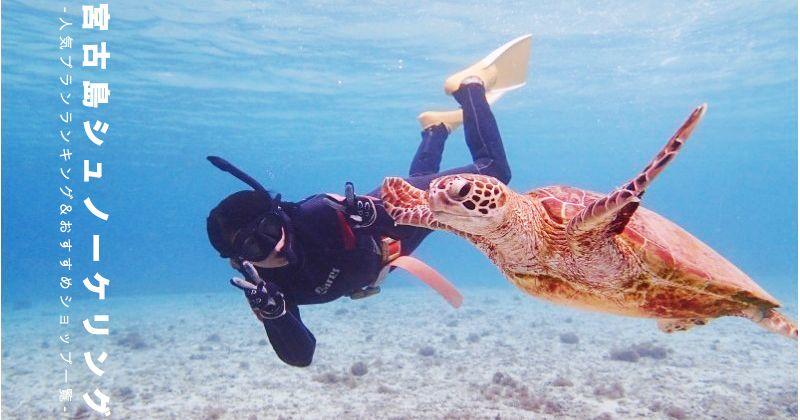 《2018年版》沖縄・宮古島シュノーケリング体験プラン予約人気ランキング&人気ショップ一覧 ウミガメシュノーケル、カクレクマノミ、絶景サンゴ礁etc…