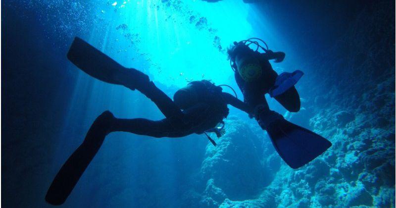 【沖縄・青の洞窟おすすめ店】楽しくなければ遊びじゃない!完全貸切制ツアーが人気「ダイビングショップなごみ」