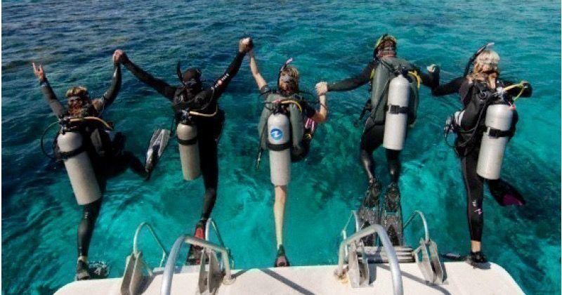 スキューバ ダイビング 免許