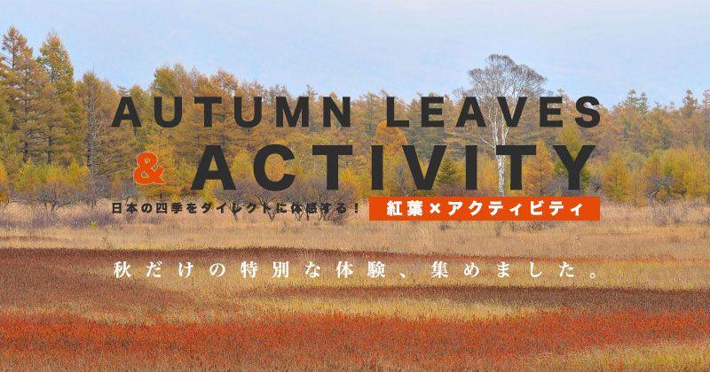 秋天のアクティビティ・レジャー・体験・遊び│秋葉狩獵と共に楽しめるおすすめツアープラン特集