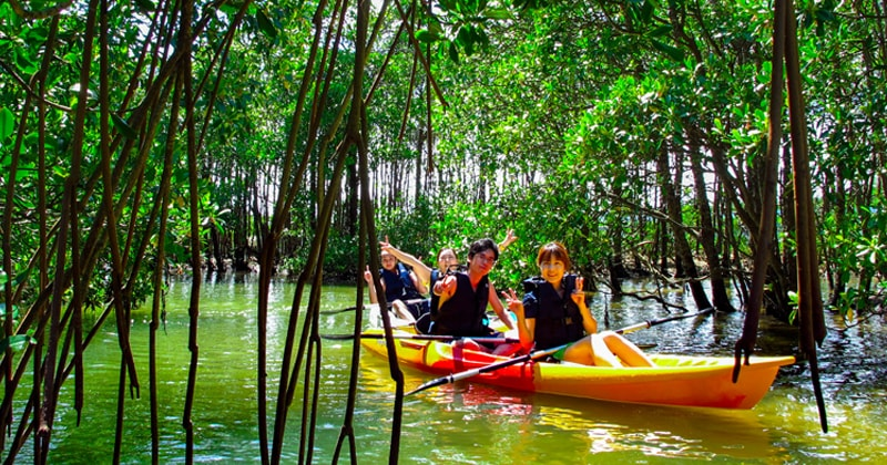 Appearance and clothes for enjoying canoeing and Kayak