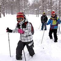 クロスカントリー(歩くスキー)