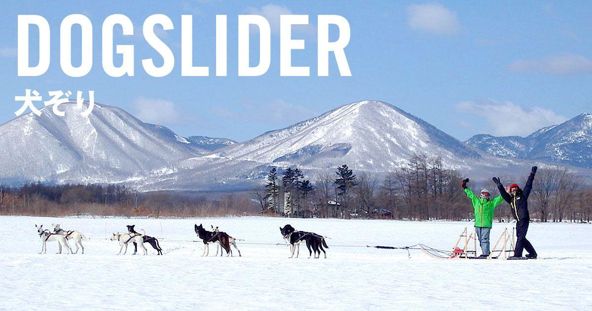 北海道・旭川の犬ぞりでお友達や家族と楽しさを分かち合う