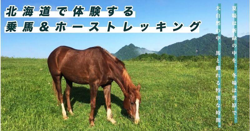 北海道 乗馬&ホーストレッキング 人気体験ツアープラン&おすすめ乗馬クラブ・ショップ情報
