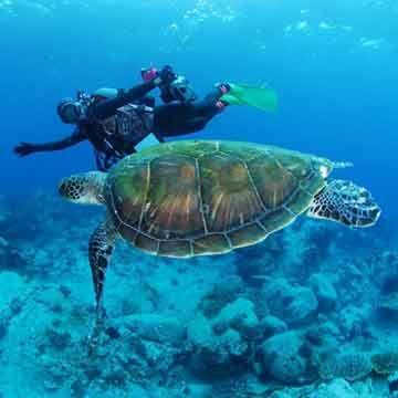 潛水認證課程