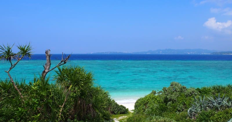 "15 minutes by ferry from Minnajima/ Okinawa main island! Every Year visited by 60,000 people of tourists adult appeal and the island of mind ""Minna"", introduce the enjoyment of the beach"